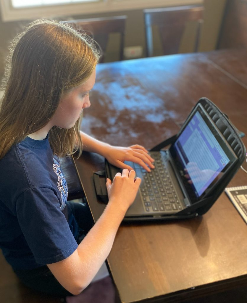 executive functioning remote learning